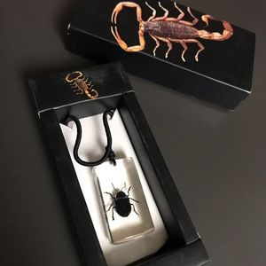 Jewelry - Real Beetle Lucite RARE Black Cord Lucky Necklace